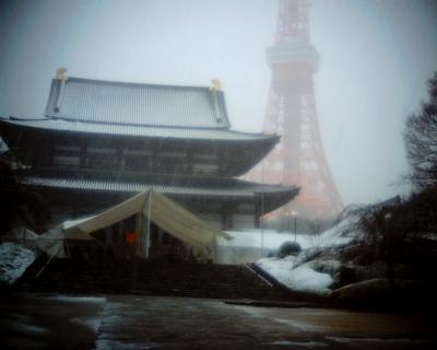 雪の増上寺境内:Entry