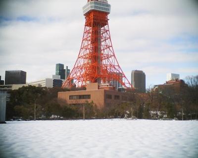 大雪の後の東京タワー:R2