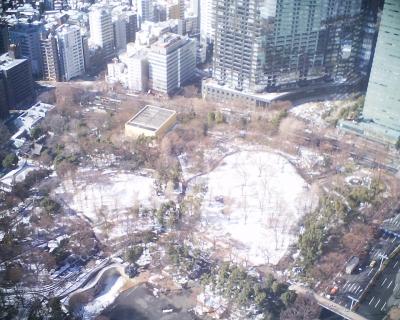 白い新宿中央公園:R2