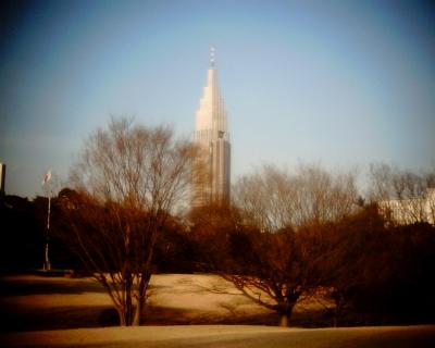 明治神宮御苑からドコモタワー:Entry