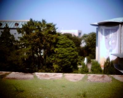 久しぶりに東京スカイツリー:Entry