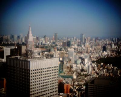久しぶりに東京タワー:Entry