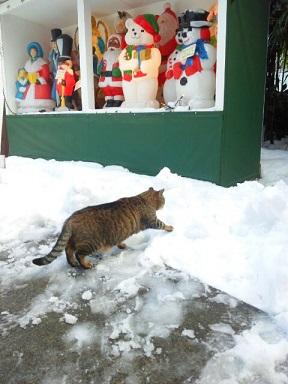 雪日記17