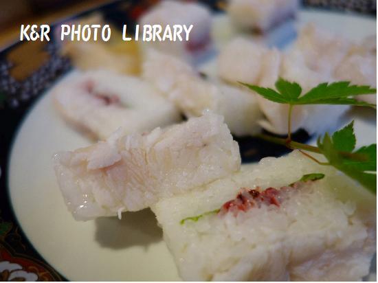 5月11日ガンバ寿司
