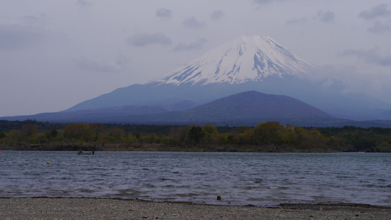 syojinko_fuji