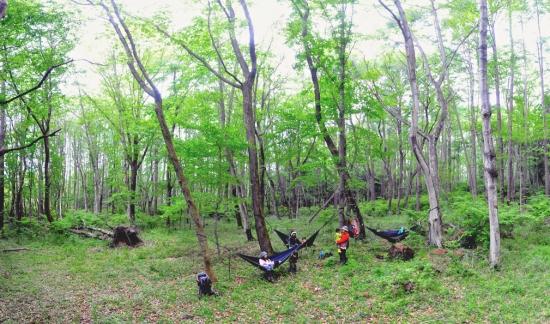 山梨・長野でのスノーシュー・湖カヤック・トレッキングツアーなら、『ひといき荘アウトドアサービス』! 2