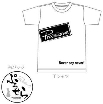 tsukiusaTproce.jpg