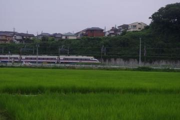 IMGP5056.jpg
