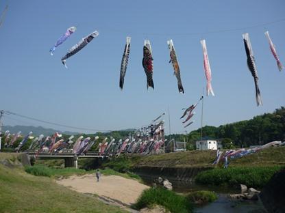 鯉のぼり14-3