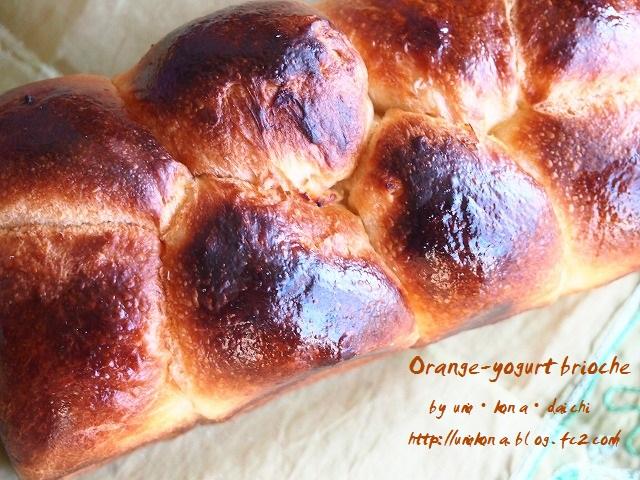 オレンジヨーグルトブリオッシュ9