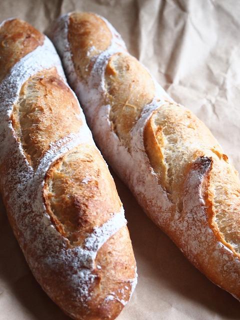 パン種バゲ2