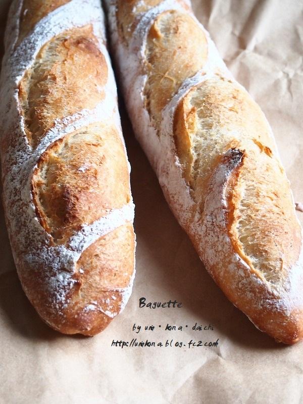 パン種バゲ9