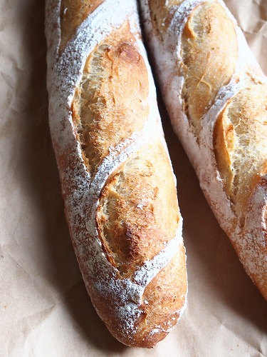 パン種バゲ5