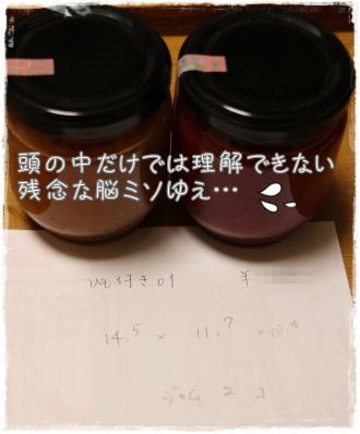 ぷれ企画13s