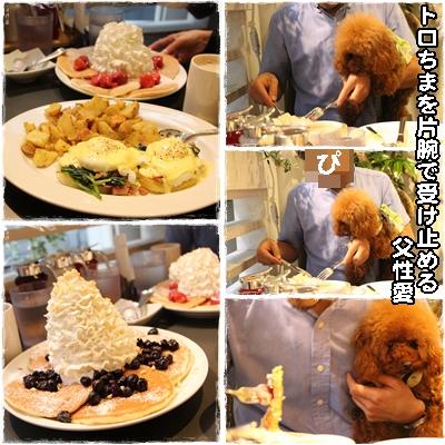 pancake5.jpg