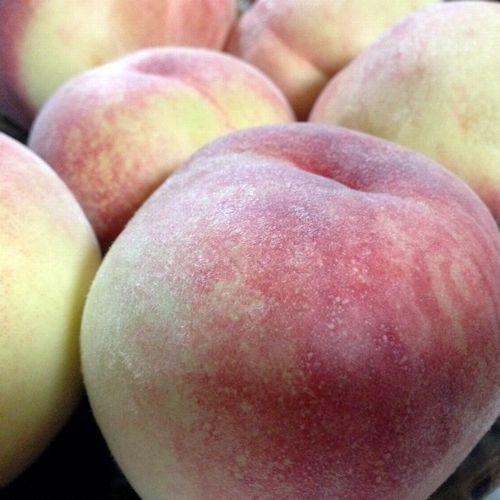 山梨地元民の桃の食べ方硬い桃お取り寄せ