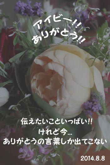 20140810_1.jpg