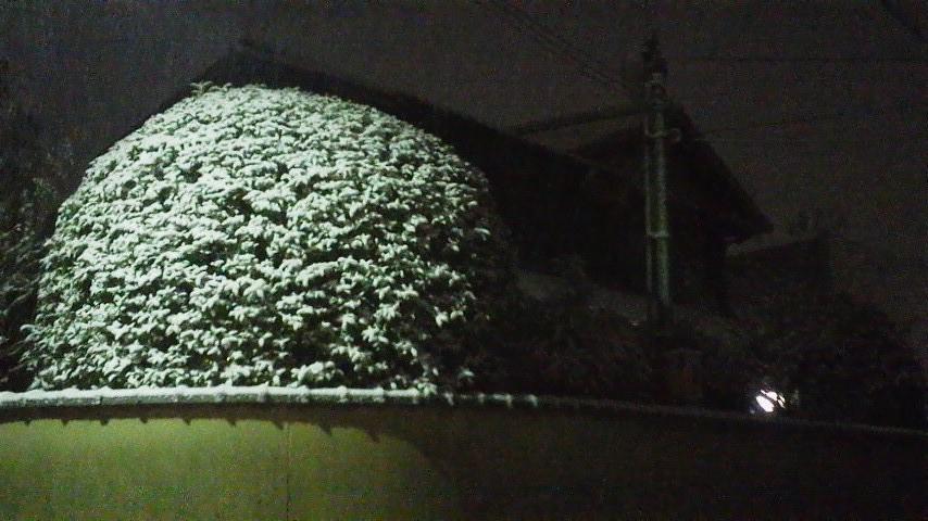雪まんじゅう