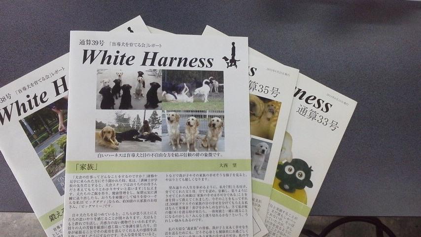 ホワイトハーネス
