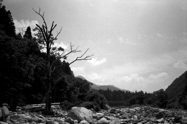深山幽谷35d
