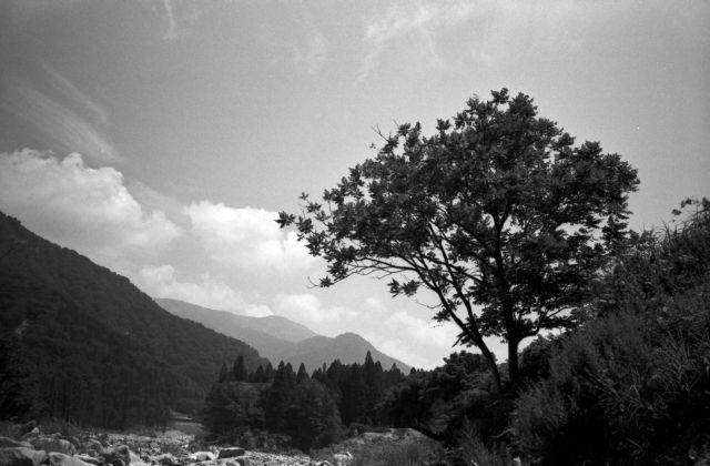 深山幽谷35f