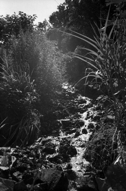 深山幽谷36a