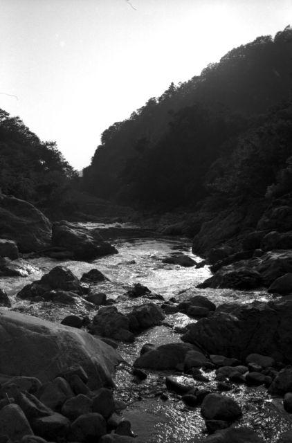 深山幽谷37a