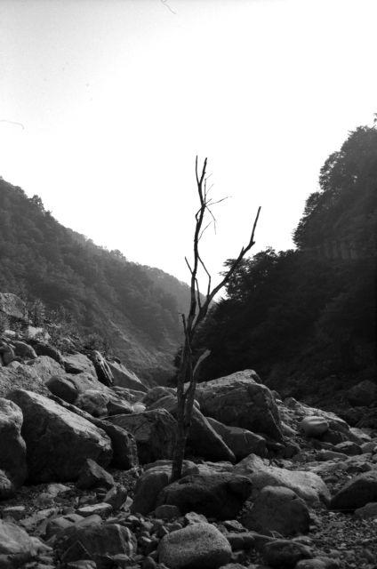 深山幽谷37e