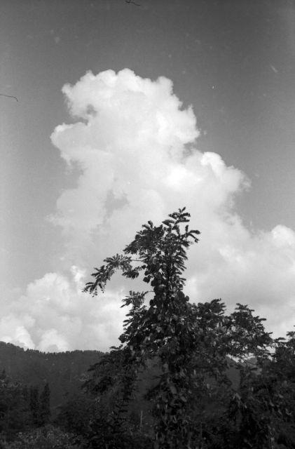 深山幽谷40a