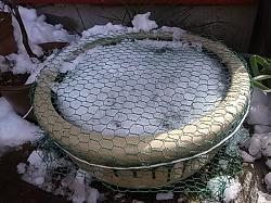 ドジョウ鉢