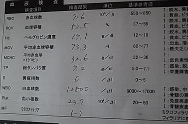 検診1-1