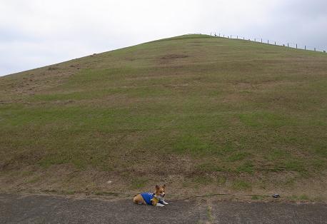 たつのこ山