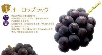 岡山オーロラ