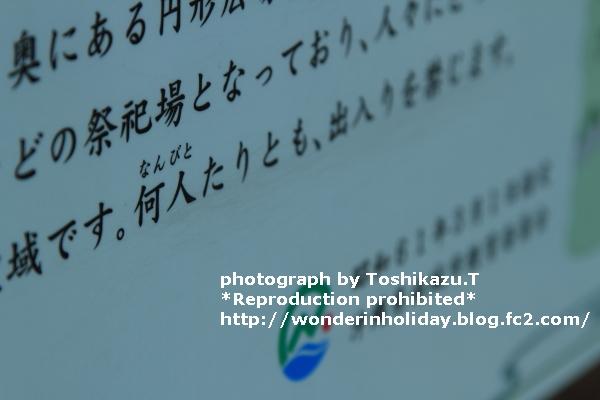 IMG_9783s.jpg