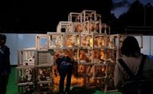 神宮外苑アート展火災、亡くなった男児の両親の現在・・・・・