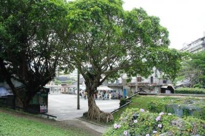 taiwan15-86