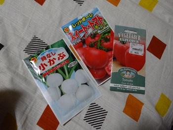 トマトの種140727