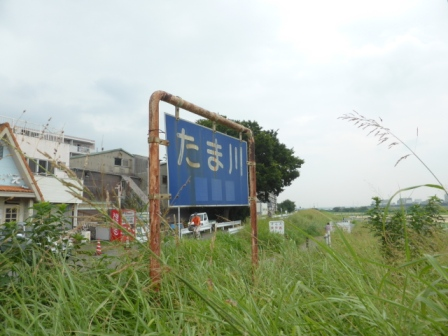 20140814-05.jpg