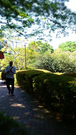 嵐山 - 1
