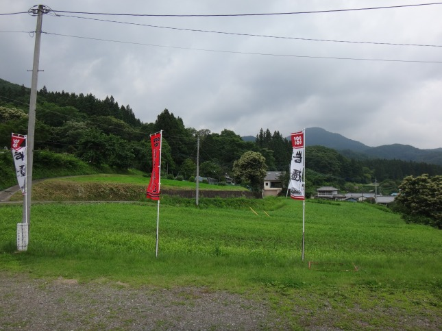 s-DSC01460.jpg