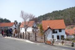 ドイツ村の坂