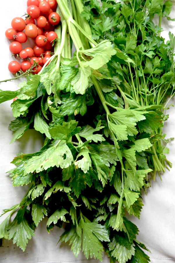沖縄の野菜を楽しむ600