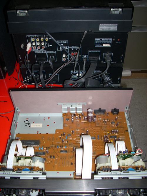 DSCN0056_500X667.jpg