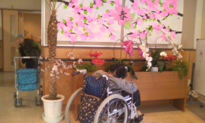 桜とオバアちゃん