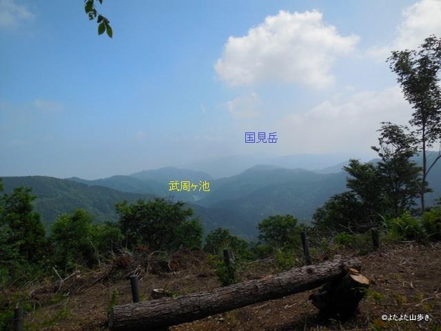 DSCN0776.jpg