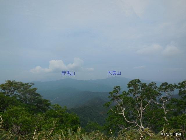 DSCN0920.jpg
