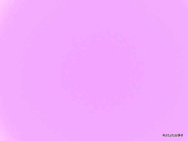 IMG_7641_2014051523565793a.jpg