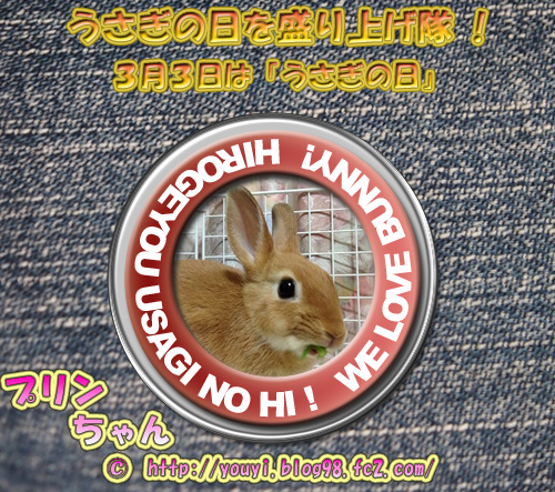 20140225013419a74.jpg
