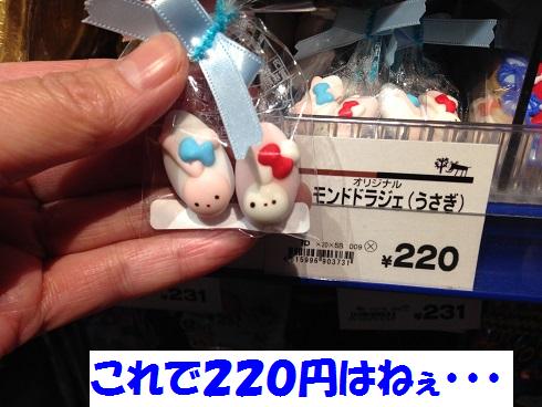 IMG_4769.うさチョコ