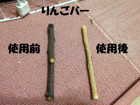 IMG_5620.りんごバー
